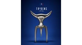 Tridens Fork